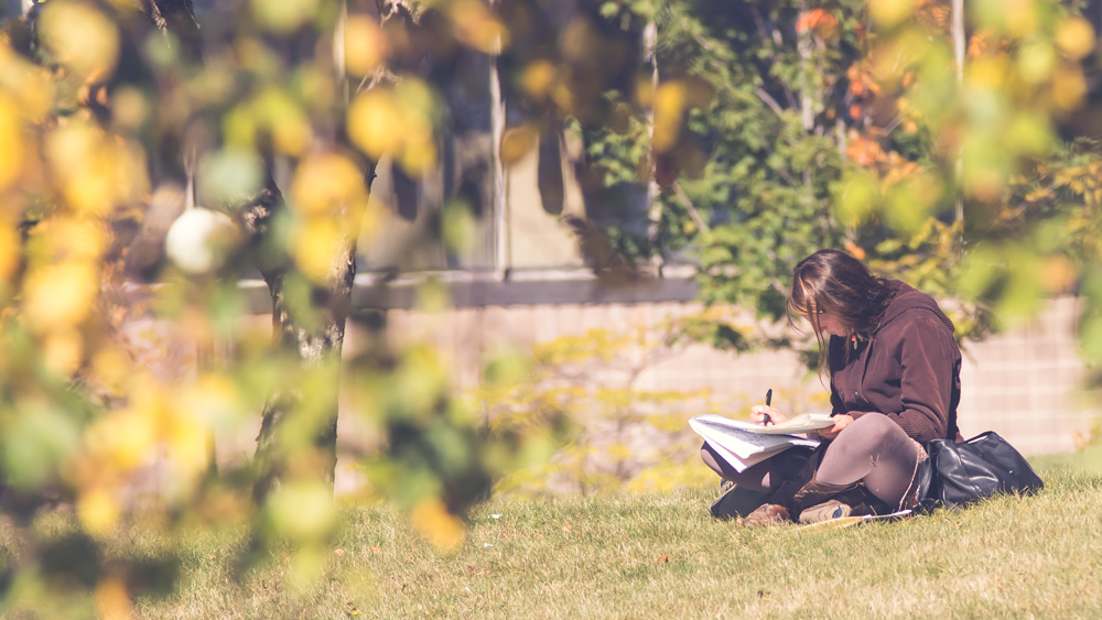 Student sitting on lawn studying