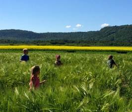 Children playing in field at LUARS
