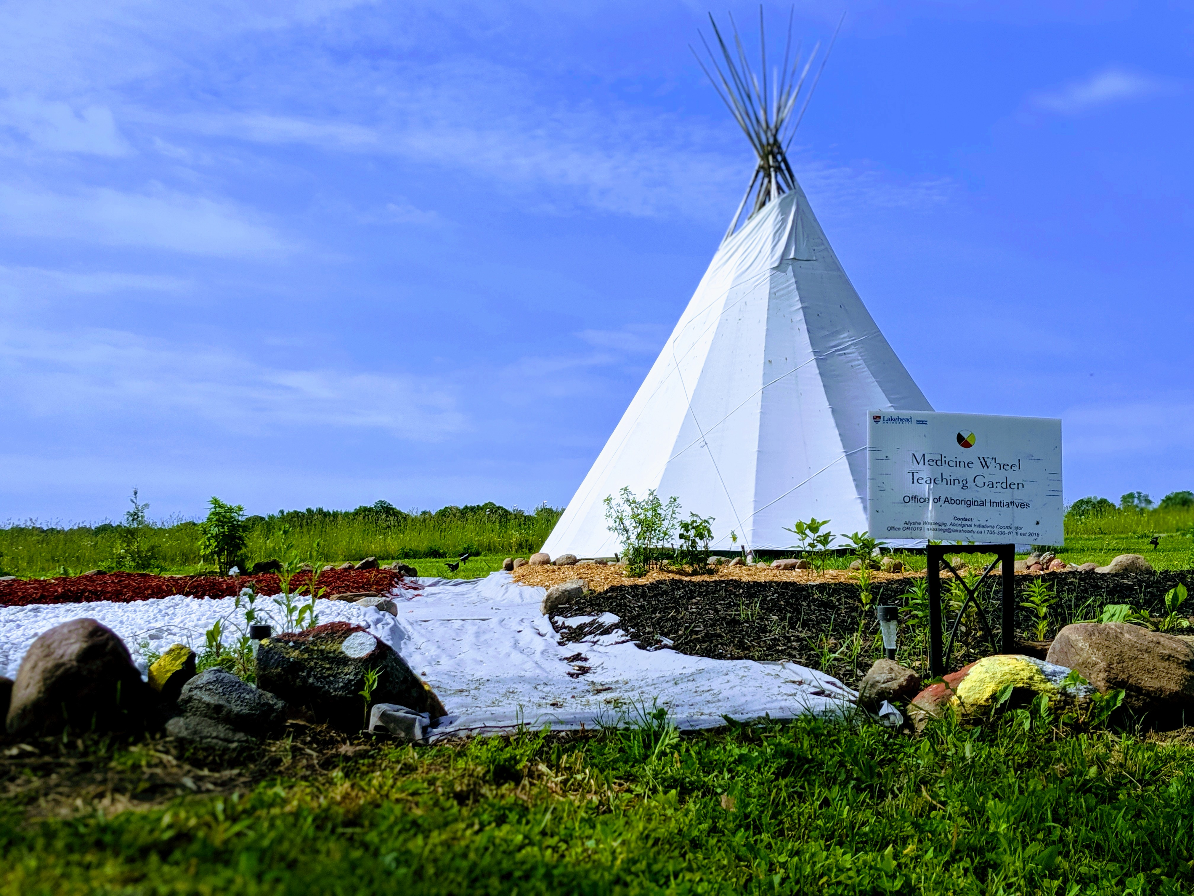 Medicine Garden with Tipi in background