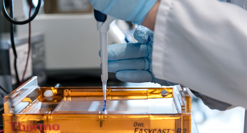 A lab technologist uses a dropper to assist with testing