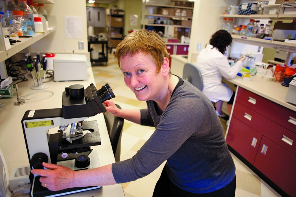 Zehbe Research Group Steps Up Work into HPV-Associated Cancers and Treatments