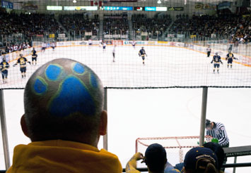 Thunderwolves fan in the stand with paw painted on back of his shaved head
