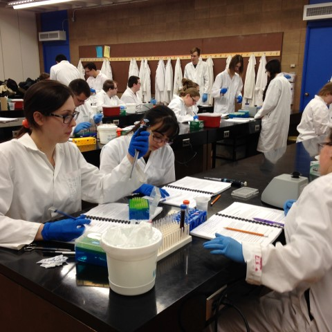 a group of students in a lab