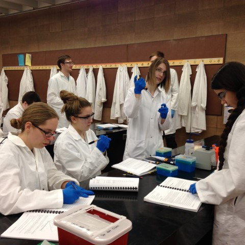 Students in laboratory biology doned in lab coats and safety glasses, working with pipettes.