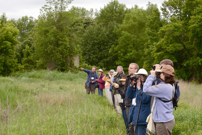 Photo of students birding.