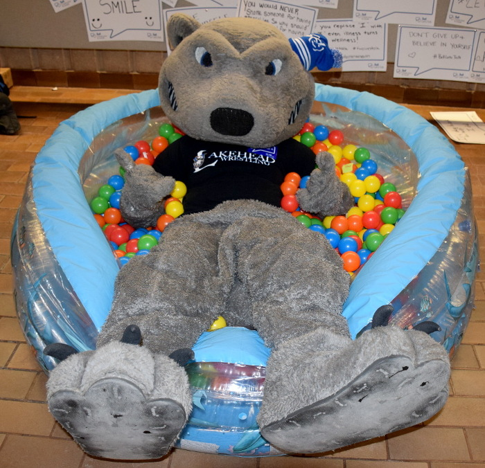 Photo of Wolfie in the ball pool.