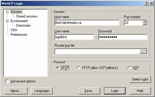 how to download files to folders winscp