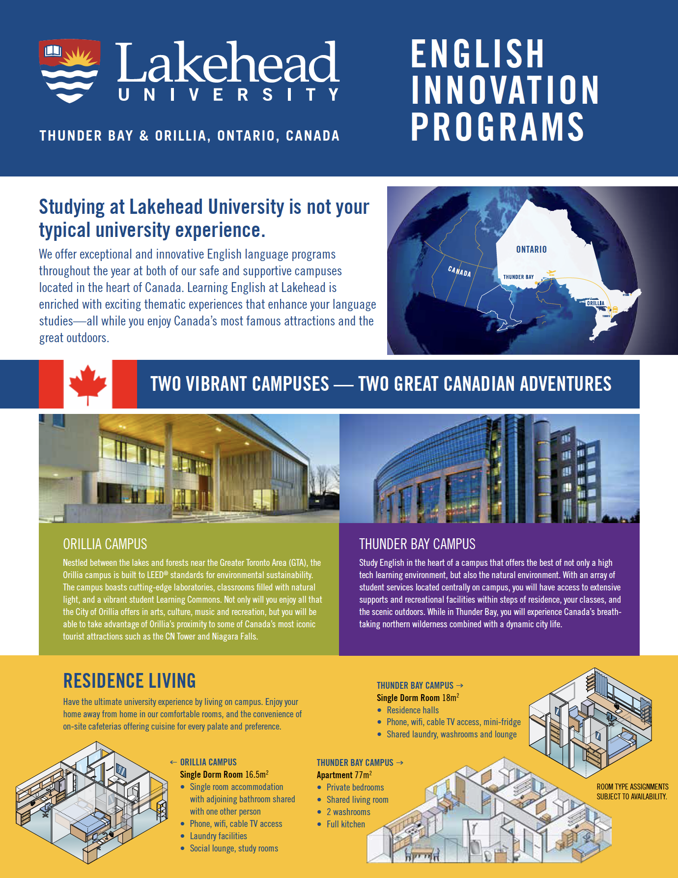 Flyer for English Innovation Programs
