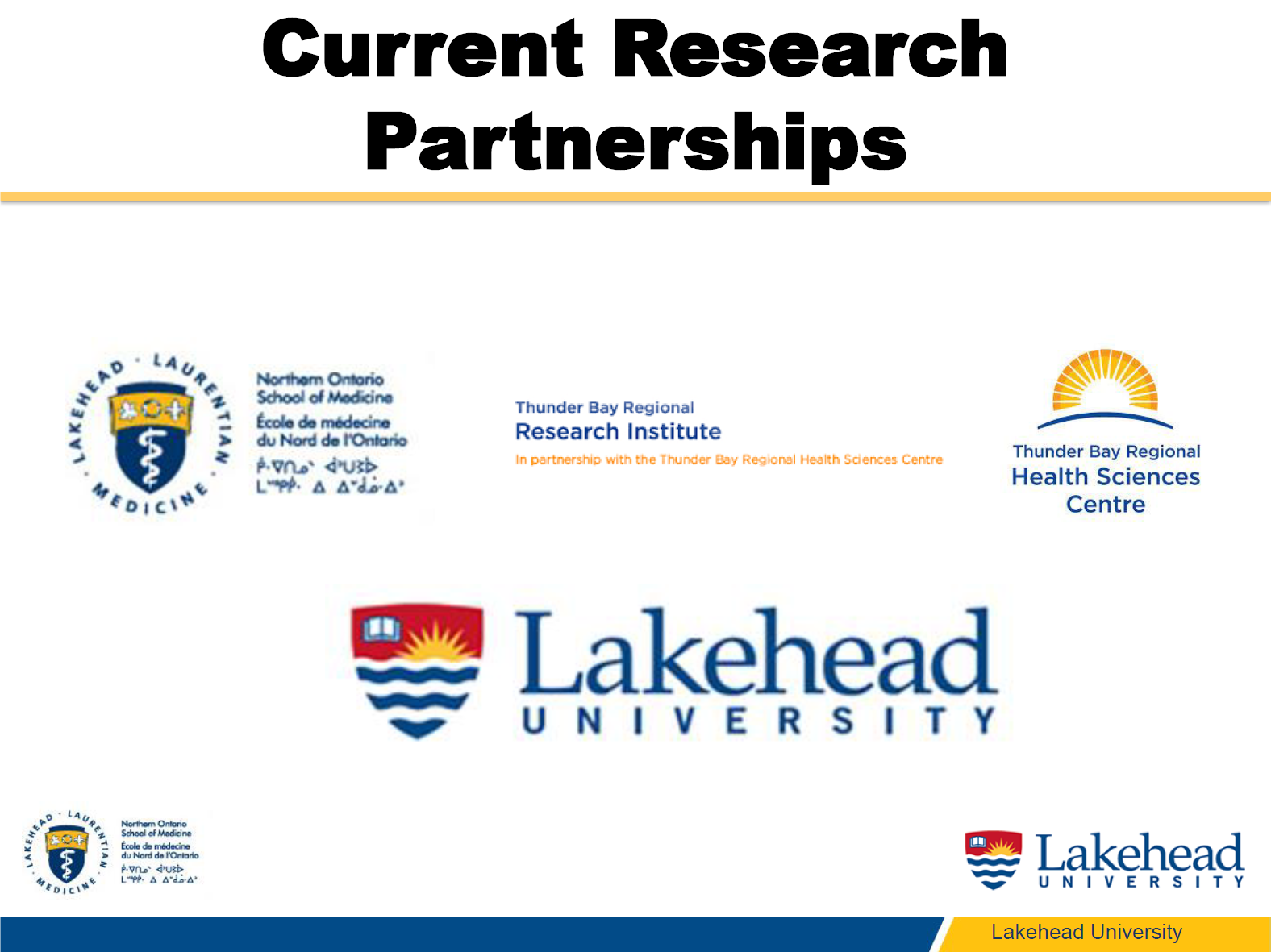 Dr. Sanzo Current Research Partnerships